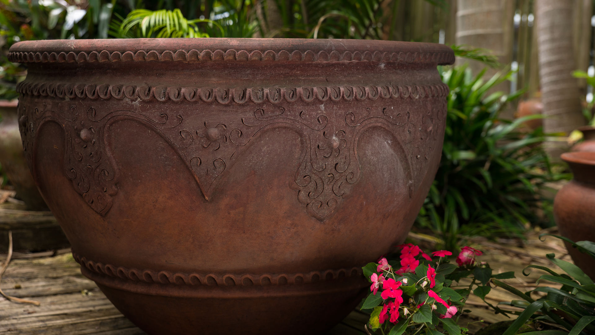 enz-of-the-earth-large-planter-1080-_DSC9972